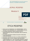 PRINCIPIuL PEDEPSEI