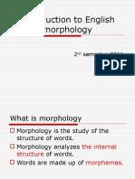 Matter Morpho Download 2