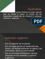 Sustratos.pptx