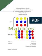 Informe de Matrices.