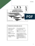 Clase 1 Intro Mamferos.pdf