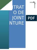 Joint Venture - Monografía