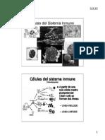 Celulas Sistema Inmune