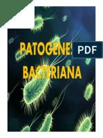 Patogenesis bacteriana