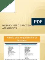 Metabolism of Protein & Aminoacids
