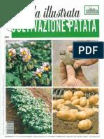 Guida Alla Coltivazione Della Patata