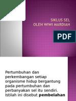 Siklus Sel & Reproduksi Sel
