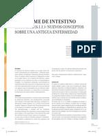 06SINDROMEINTESTINO-6