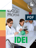 IDEI_2009-2013