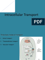 Intracellular Transport