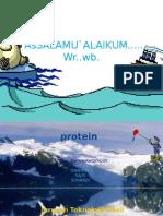 Persentase Protein