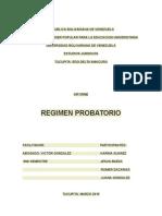 La Prueba Informe Con Exposicion 9