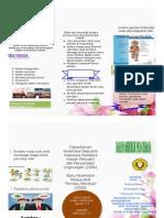 Leaflet Prilaku Remaja