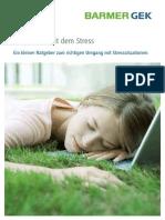 BARMER GEK - Kein Stress mit dem Stress