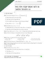 Đề cương ôn tập Học kỳ 2 - Môn Toán 11
