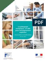 06 La Pédagogie Numérique - Un Défi Pour l Enseignement Supérieur - CESE Février 2015