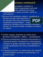 Homeostazia Metabolica_cu Pagini