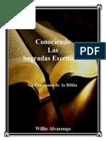 Panorama de Toda La Biblia