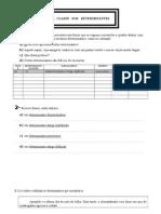 A Classe Dos Determinantes - Ficha de Trabalho (1) 2