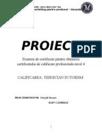 Plan Proiect