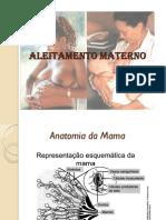 19781078 Aleitamento Materno Licca(3)