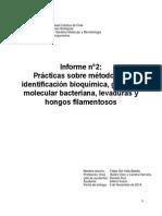 Informe n°2 - BIO151E - Felipe Del Valle
