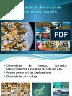1organizaoediversidadedosseresvivoscap01-130414085007-phpapp01 (1).pptx