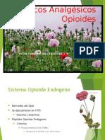 Exposicion Analgesicos.pptx
