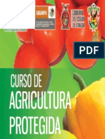 Curso de Agricultura Protegida (Tomate)
