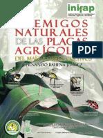 Enemigos Naturales de Las Plagas Del Maíz & Otros Cultivos