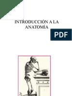 Clase de Introducciòn a La Anatomia Jatd