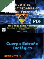 Urgencias Gastrointestinales en la clínica veterinaria.pdf