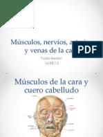 MUSCULOS ARTERIAS Y VENAS CRANEO.pdf