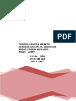 Sutentacion de Acciones en Bvl- Finanzas i