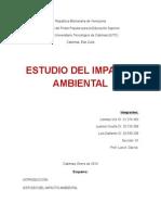 Estudio Del Impacto Ambiental