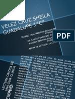 Sheila Guadalupe Velez Cruz