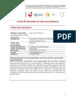 1. Ficha de Resumen de Idea de Ponencia Juan Carlos Pietro