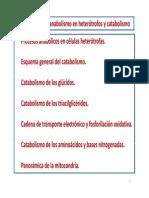 ANACATA.pdf