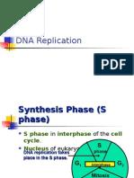 Bio Final Dna Replication