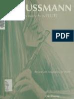 Soussman - Flute