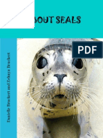 All About Seals