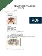 Radioanatomi Urogenital Word