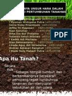 PENTINGNYA UNSUR HARA DALAM TANAH BAGI PERTUMBUHAN TANAMAN.pptx