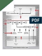 mapa de procesos argos.docx