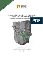 Rudistas Del Cretacico Superior Tesis