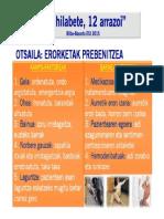02.FEB-2015_Campaña de Seguridad_12 meses 12 causas.pdf