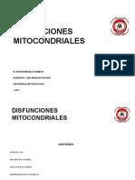 Disfunciones Mitocondriales Copia 4.27.15 a.m. Copia