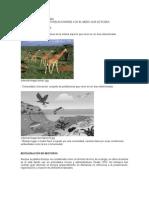 Ecología y Ecosistemas.docx2012