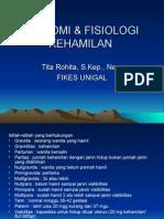 ANATOMI___FISIOLOGI_KEHAMILAN.ppt