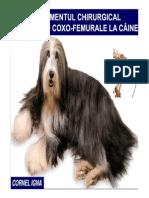 LUXATIA COXO-FEMURALA